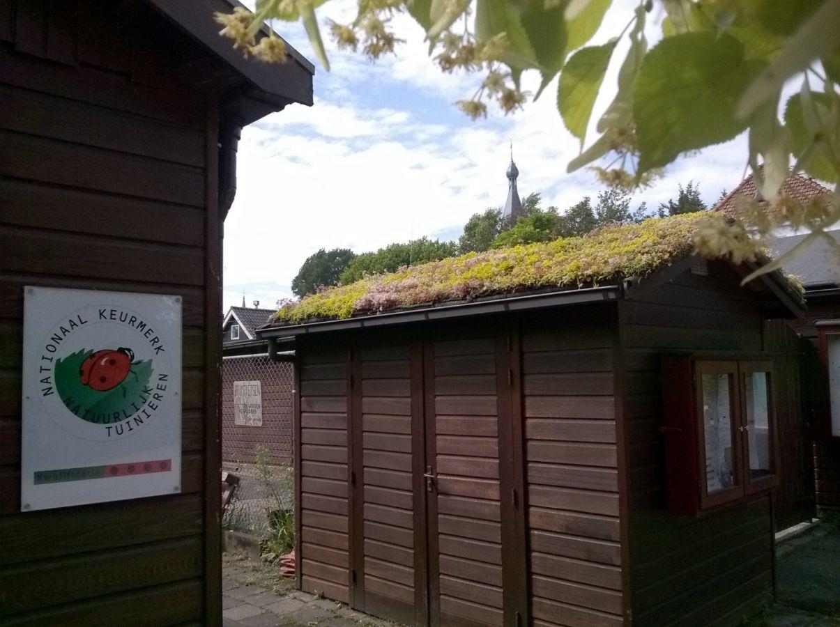 Entree met groen Rolstoelhuis